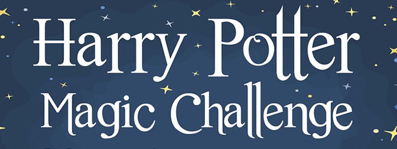 Harry Potter Magic Challenge School of Magic